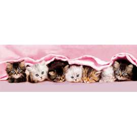 CLEMENTONI -  Puzzle - Kittens under blanket - 1000 pezzi High Quality Collection Panorama - 39127